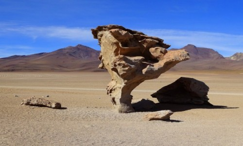 BOLIWIA / Altiplano-Potosi /  Reserva Nacional de Fauna Andina Eduardo Abaroa/Arbol de piedra / Kamienne drzewo