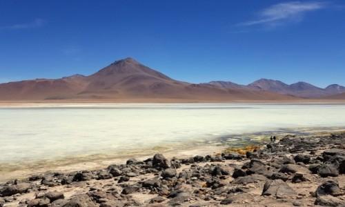 Zdjecie BOLIWIA / Altiplano-Potosi / Eduardo Abaroa Andean Fauna National Reserve / Laguna Blanca