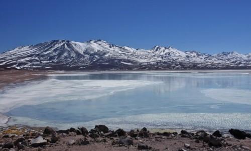 Zdjecie BOLIWIA / Sur Lípez Province / Laguna Blanca / Laguna Blanca