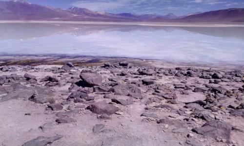 Zdjecie BOLIWIA / Reserva Nacional de Fauna Andina Eduardo Avaroa / Laguna Bianca 4350m.n.p.m. / CHILE I BOLIWIA - SAMOTNIE I INTENSYWNIE