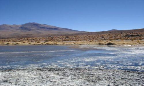 Zdjecie BOLIWIA / brak / pod granica z Chile / laguna