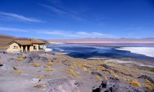 Zdjęcie BOLIWIA / brak / 25 km na wschód od granicy z Chile / Laguna Colorada