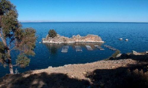 Zdjecie BOLIWIA / Altiplano / Jezioro Titicaca / Boliwijskie wybrzeże Titicaci