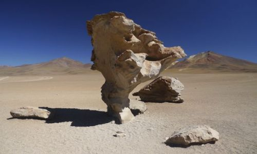 Zdjecie BOLIWIA / Atacama / Atacama / konkurs
