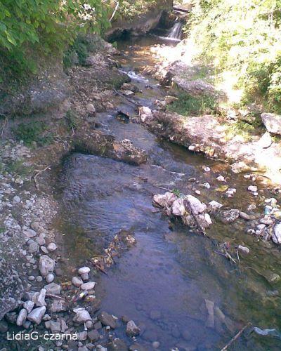 Zdjęcia: BOSNIA, BOSNIA06, BOśNIA