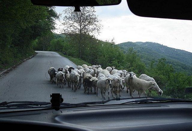 Zdjęcia: granica, granica bośniacka, Welcome to Bosnia, BOśNIA