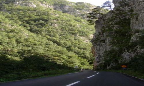 Zdjecie BOśNIA i HERCEGOWINA / Bośnia / Bośnia / Góry w Bośni-gdzieś na trasie