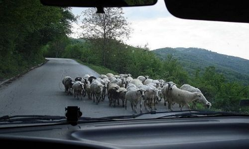 Zdjecie BOśNIA i HERCEGOWINA / granica bośniacka / granica / Welcome to Bosnia