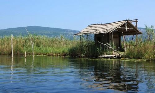 Zdjecie BO�NIA i HARCEGOWINA / Delta Neretwy  / Hutovo Blato, rezerwat przyrody / Przysta�