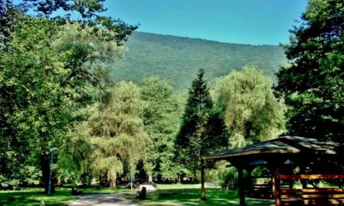 Zdjecie BOśNIA i HERCEGOWINA / centralna Bośnia / Ilidża,Sarajewo / Vrelo Bosne-park miejski