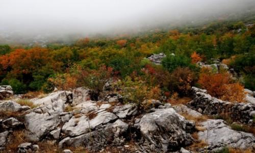Zdjęcie BOśNIA i HERCEGOWINA / - / na trasie Makarska- Vitina / góry... zniknęły za mgłą!:(