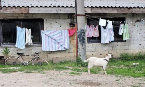 Zdjęcie BOśNIA i HERCEGOWINA / - / Livno / przed chatką...
