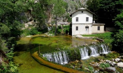 Zdjęcie BOśNIA i HERCEGOWINA / - / Livno / w świecie młynów wodnych...