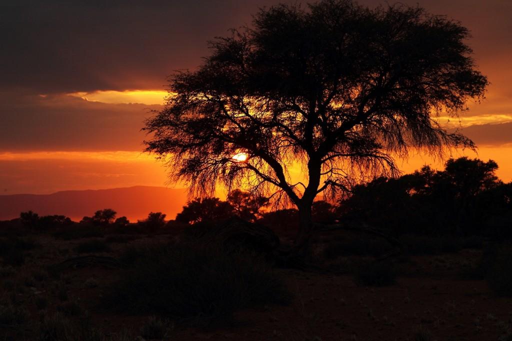 Zdjęcia: Botswana, I kończy się kolejny dzień..., BOTSWANA