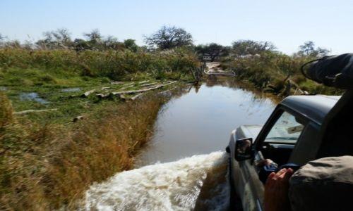 Zdjęcie BOTSWANA / Park Moremi / Moremi / Przejazd przez rzekę