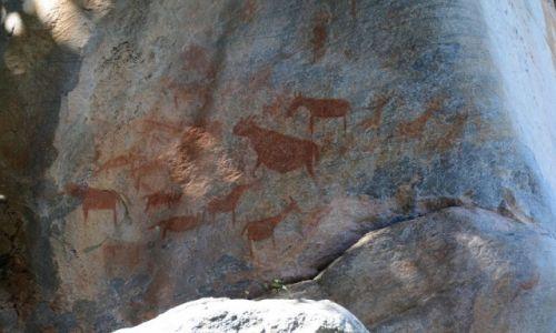 Zdjęcie BOTSWANA / - / Wzgórza Tsodilo / Prehistoryczne rysunki naskalne