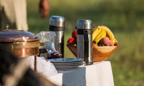 BOTSWANA / Okavango Delta / Savute / Śniadanie w Savute