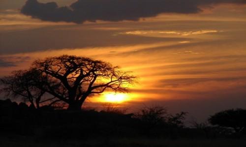 Zdjęcie BOTSWANA / W pobliżu Kalahari / Kubu Island / Kubu Island
