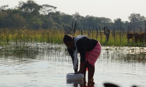 Zdjecie BOTSWANA / - / Delta Okavango / Pracuję :)