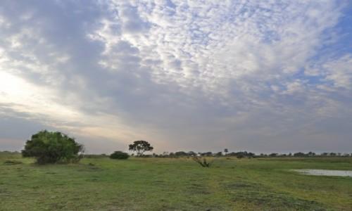 BOTSWANA / Północna Botswana  / Delta Okawango / Krajobraz Okawango