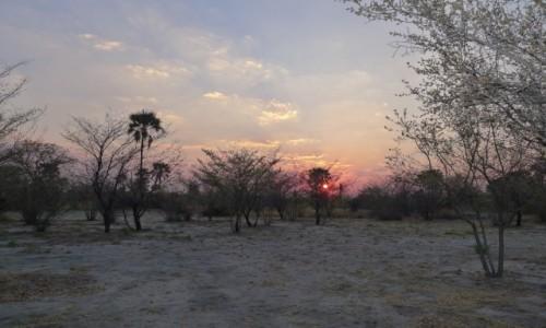 Zdjecie BOTSWANA / Północna Botswana  / W drodze na Delte / W buszu wstaje nowy dzień