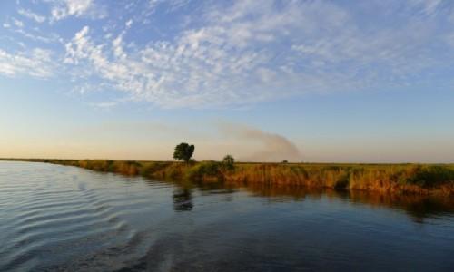 Zdjęcie BOTSWANA / Północna Botswana  / Park Narodowy Chobe/ na łodzi  / Busz gdzieś płonie