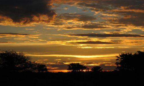 Zdjecie BOTSWANA / Okawango / Audi Camp / afrykański wieczór