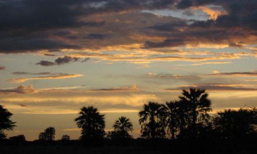 Zdjęcie BOTSWANA / Okawango / Audi Camp / szalony malarz tu był