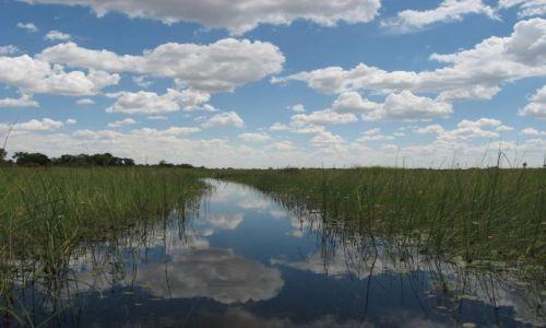 Zdjęcie BOTSWANA / Okawango / delta Okawango / droga do nieba
