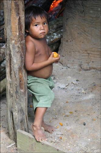 Zdjęcia: Indiańska wioska Acajatuba, Amazonia, na progu, BRAZYLIA
