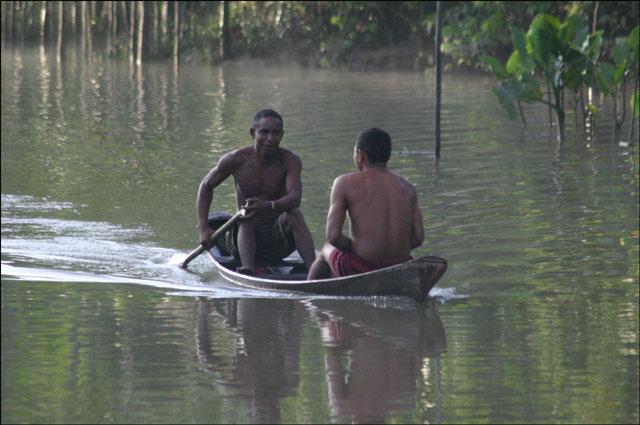Zdjęcia: dorzecze Rio Negro, Amazonia, amazońska autostrada, BRAZYLIA