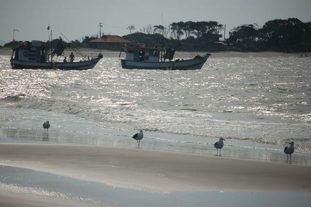 Zdj�cia: Ilha do Mel, Wyspa miodowa, Mewy & kutry, BRAZYLIA