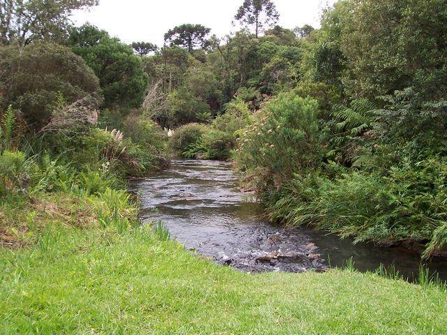 Zdj�cia: Serra Catarinense, Stan Santa Catarina, Okolice Urubici, BRAZYLIA