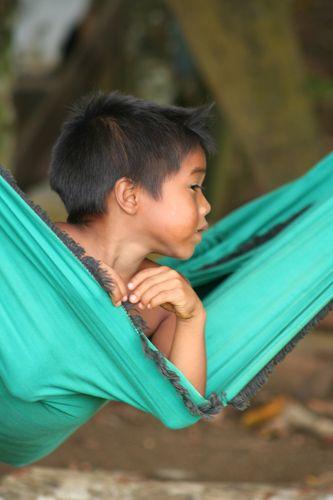 Zdjęcia: Amazonia, Amazonia, BRAZYLIA