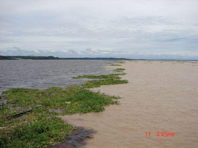 Zdjęcia: Rio Negro i Amazonka, okolice Manaus, gdzie Amazonka i Rio Negro się spotkały..., BRAZYLIA
