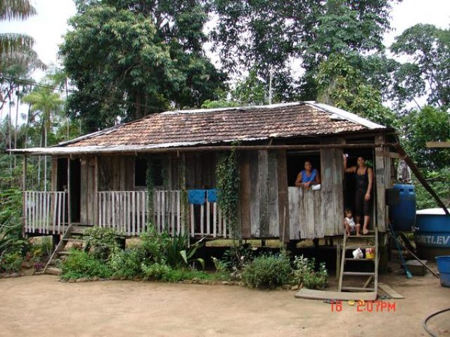 Zdjęcia: Amazonka, Amazonia, w tropikalnym lesie..., BRAZYLIA