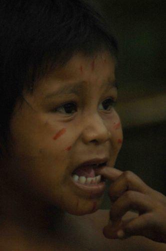 Zdjęcia: okolice Manaus, amazonia, strach przed białym, BRAZYLIA