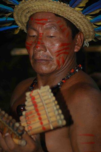Zdjęcia: okolice Manaus, amazonia, janko muzykant, BRAZYLIA
