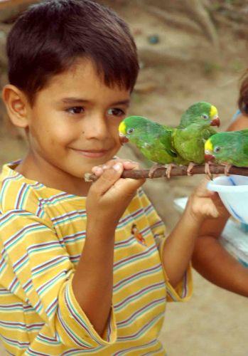 Zdjęcia: okolice Manaus, amazonia, wszystko na sprzedaż!, BRAZYLIA