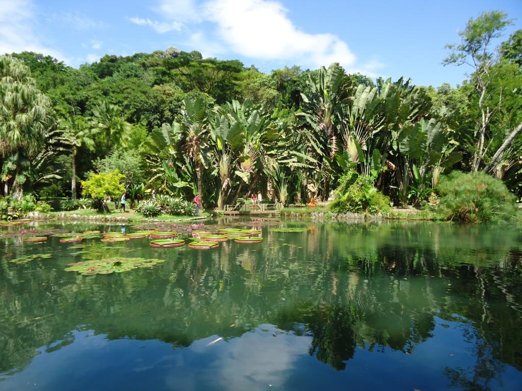 Zdjęcia: Rio de Janeiro, Rio de Janeiro, Jardim Botanico (1), BRAZYLIA