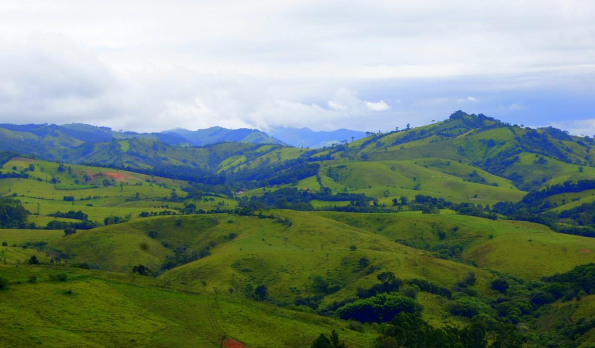 Zdjęcia: okolice Parati, Stan Rio De Janeiro, W drodze do Parati, BRAZYLIA