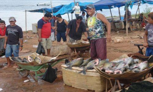 Zdjecie BRAZYLIA / Manaus / Przeprawa promowa / Sprzedawca makr