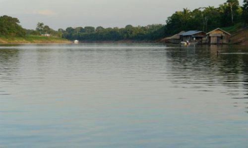 Zdjęcie BRAZYLIA / Pólnoc / Manaus / Amazonia