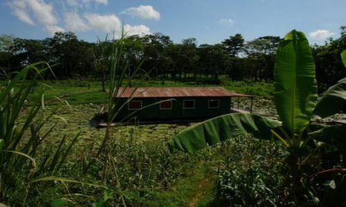 Zdjecie BRAZYLIA / Północ / Manaus / Brazylia