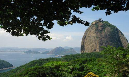 BRAZYLIA / Rio de Janeiro / Rio de Janeiro / Głowa Cukru