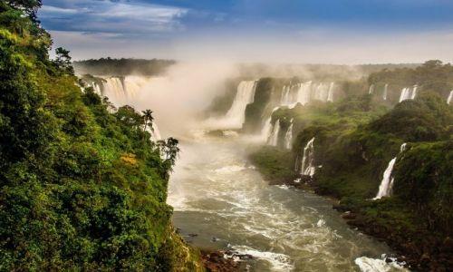 Zdjęcie BRAZYLIA / Cataratas del Iguazu / Iguazu / JUNGLE