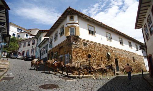 Zdjęcie BRAZYLIA / Minas Gerais / Ouro Preto / Obrazek