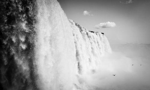 Zdjęcie BRAZYLIA / Parana / Foz do Iguacu / Like in Heaven