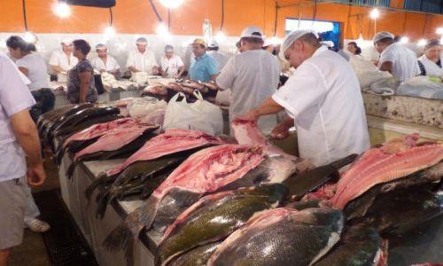 Zdjęcie BRAZYLIA / Amazonia / Manaus / Na targu rybnym w Manaus