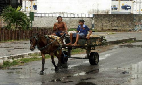 Zdjecie BRAZYLIA / Rio Grande Do Norte / Natal / Pracujące dzieci